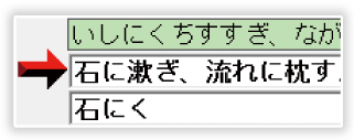 漢字読み仮名表示